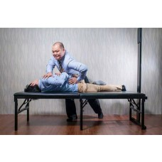 Seminar Offer Chiropractic Meridian Treatment